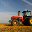 Red tractor on the agricultural field — Stock Photo