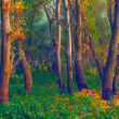 Landscape painting - deep forest — Stock Photo