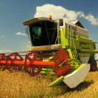 Combine harvester working on the wheat field — Stock Photo #35666635