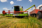 Combine harvester unloads wheat into the tractor — Stock Photo