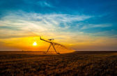 Irrigation pivot on the wheat field — Stock Photo