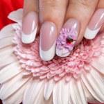 Beautiful manicure — Stock Photo