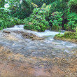 Stock Photo: Beautiful river in Jamaica