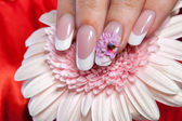 Beautiful manicure — Stock Photo