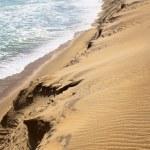 Skeleton coast landscape — Stock Photo