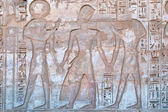 Ancient Egyptian hieroglyphic carving in Medinet Habu — Stock Photo