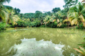 Beautiful tropical lake — Stock Photo