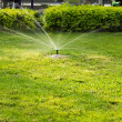 Stock Photo: Lawn Irrigation