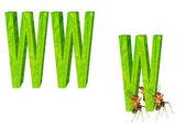 Ameisen und netzwerk — Stockfoto
