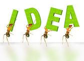 Mravenci — Stock fotografie