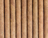Cigar — Stock Photo