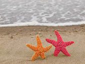 Two Starfish on the Shoreline with Waves — Stock Photo