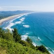 A View of the Ocean from a Scenic Overlook — Stock Photo
