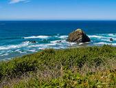 Mají výhled na členité skalnaté pláže na oregonském pobřeží — Stock fotografie