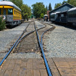 Old Railroad Tracks at a Junction — Stock Photo