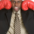 Businessman Wearing Boxing Gloves — Stock Photo #16627131
