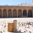 Mosque Zitouna.Tunis. - Stock Photo