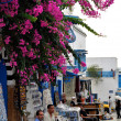 Sidi Bou Said. Tunis. — Stock Photo #23573451