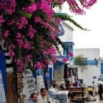 Sidi Bou Said. Tunis. — Stock Photo #23573451