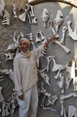 Berber in the Sahara at the zoo shows the animal bones. Tunis. — Stock Photo
