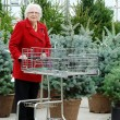 Senior woman with cart shopping christmas tree — Stock Photo #11898245