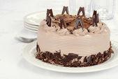 Bolo de chocolate com flocos — Foto Stock