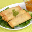 Spring rolls with plum sauce — Stock Photo #24703753