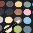 Macro eye shadow palette makeup with brush — Stok fotoğraf