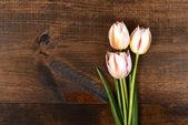 Białe tulipany na drewno — Zdjęcie stockowe