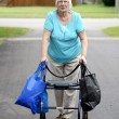 Senior woman and walker overloaded with shopping bags — Stock Photo #29564669