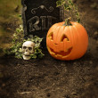 Pumpkin and skull at grave — Stock Photo