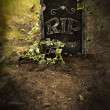 Grave with ivy — Stock Photo