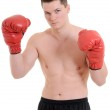 Young male boxer — Stock Photo