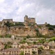 Chateau Beynac from the Dordogne — Stock Photo