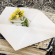 Envelope with flower — Stock Photo #51273083