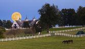 Salida de la luna en una granja de caballos — Foto de Stock