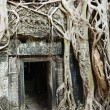 Ta Prohm - Stock Photo