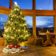 Christmas tree in modern home — Stock Photo #17818159
