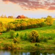 Stock Photo: Farm landscape