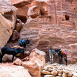 Donkeys at Petra — Stock Photo
