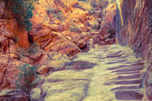 Hiking trail in Petra — Stock Photo