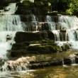 Forest creek and waterfall — Video Stock