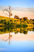 Evening on the lake — Stock Photo