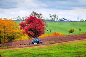 Farm work — Stock Photo