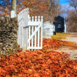 Late fall in Kentucky — Stock Photo