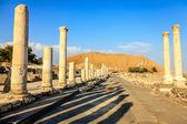 Beit She'an — Zdjęcie stockowe