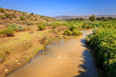 The Jordan River — Stockfoto