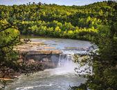 Cumberland falls — Stok fotoğraf