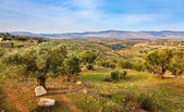 Beit Netofa Valley — Stock Photo