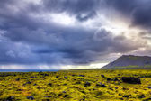 Old lava field — Stock Photo